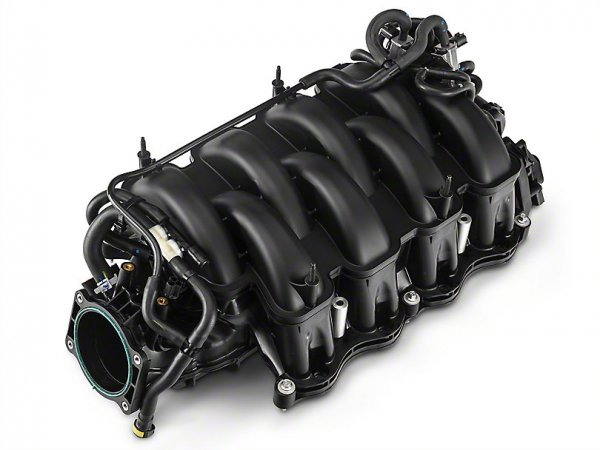 Ford Performance GT350 5.2L Voodoo Ansaugstutzen (15-17 GT, 15-18 GT350) M-9424-M52