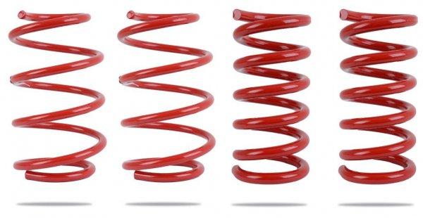 Pedders Tieferlegungsfedern 30mm (05-14 All)