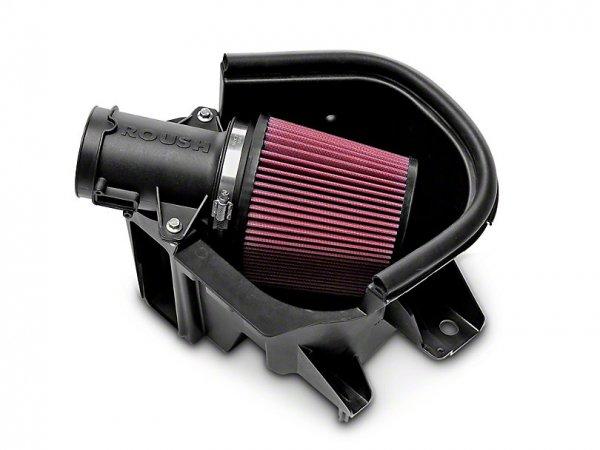 Roush Kalt-Luftfilter (10-14 GT, 12-13 BOSS 302) 420131