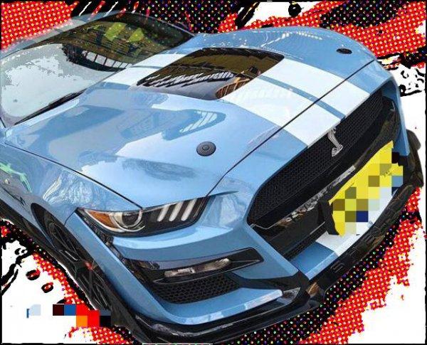 AMPP GT500 Style Aluminium/ABS Motorhaube (15-17 All)